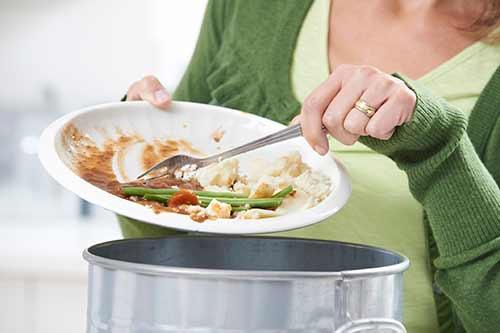 food-scrap